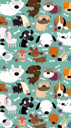 coque Dogs