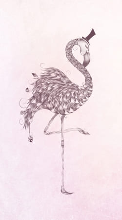 coque Flamingo
