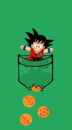 coque Pocket Collection: Goku Dragon Balls