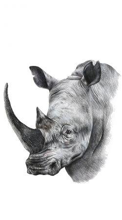 coque rhinoshield huawei p10