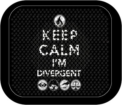 enceinte bluetooth Keep Calm Divergent Faction