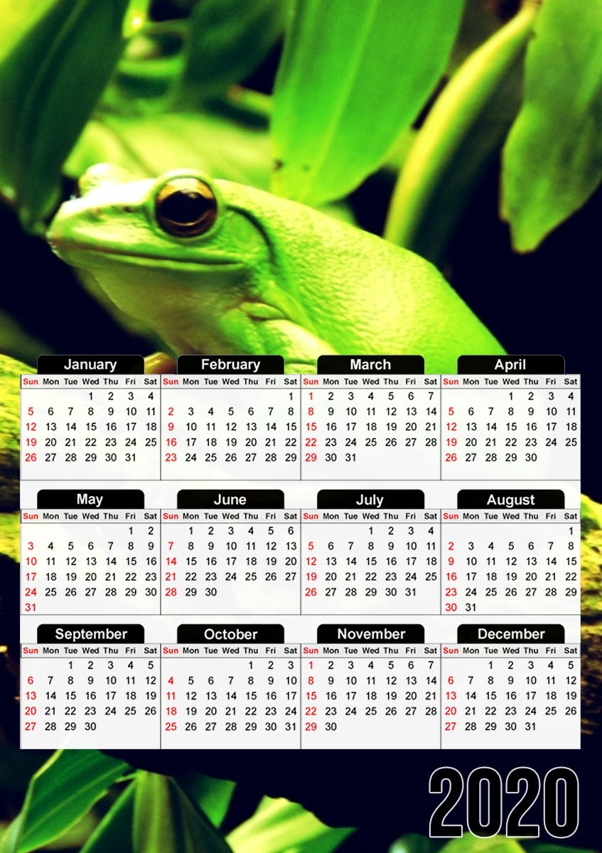 calendrier Green Frog 2020 / 2021