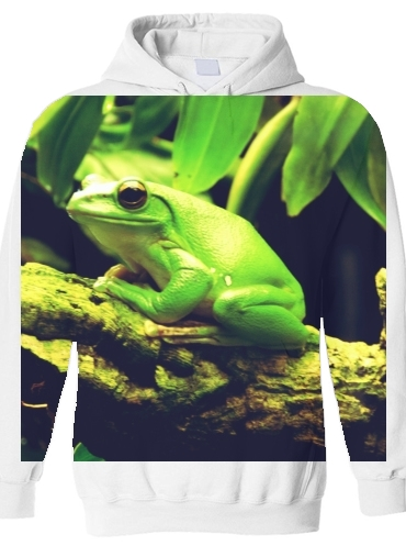 pull capuche hoodie Green Frog