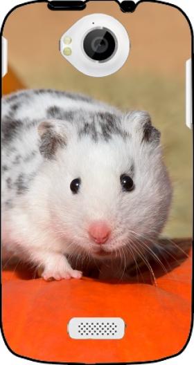 Book Cover Fly Iq Black : Coque fly iq trend hamster dalmatien blanc tacheté de