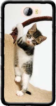 huawei y5 ii coque de chat